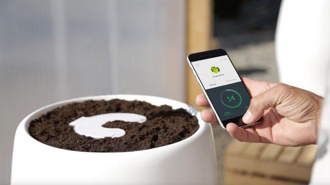 Bios Incube bloempot met iPhone-app