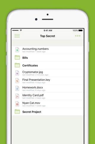 Cryptomator op de iPhone: lijst met bestanden