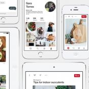 Pinterest voor de iPhone en iPad.