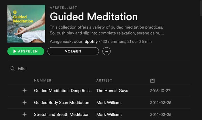 Spotify:  leer mediteren