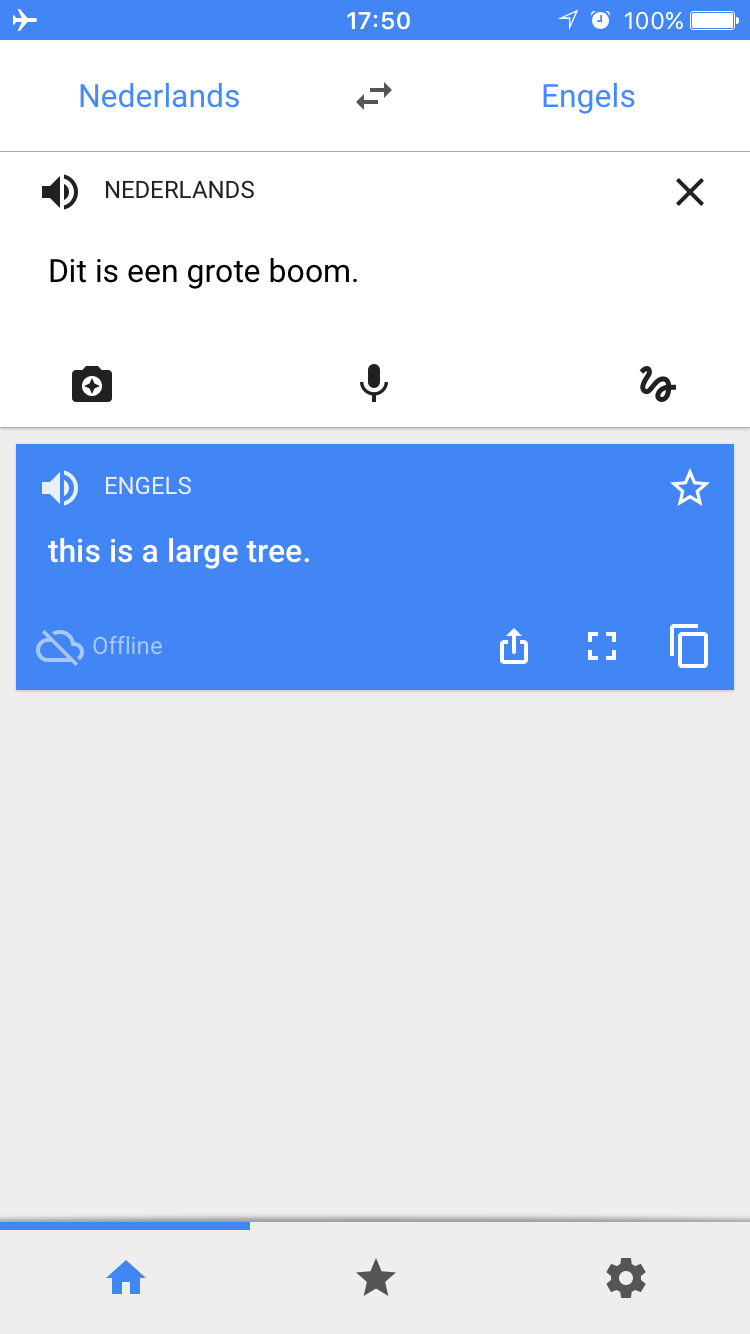 how to add google translate
