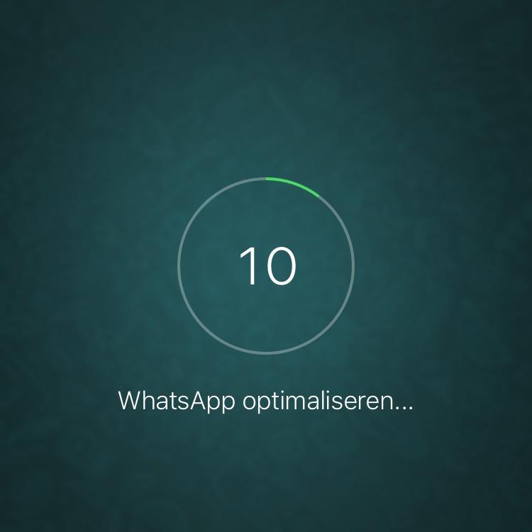 WhatsApp optimaliseren op de iPhone in het klein.