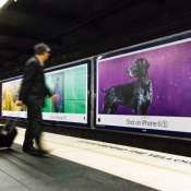 Nieuwe 'Shot on iPhone'-campagne focust op kleur