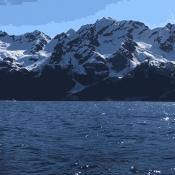 Google Motion Stills maakt een gifje van je Live Photo's