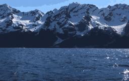Google Motion Stills: Live Photos omzetten met iOS-app