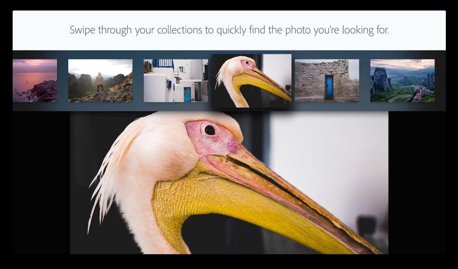 Adobe Lightroom op de Apple TV met een foto.