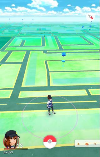 Pokemon Go de wereld