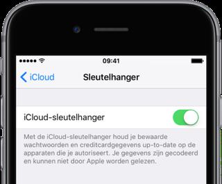 iCloud-sleutelhanger instelling in iOS.