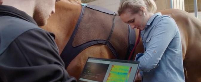 Equisense meet gezondheid van je paard