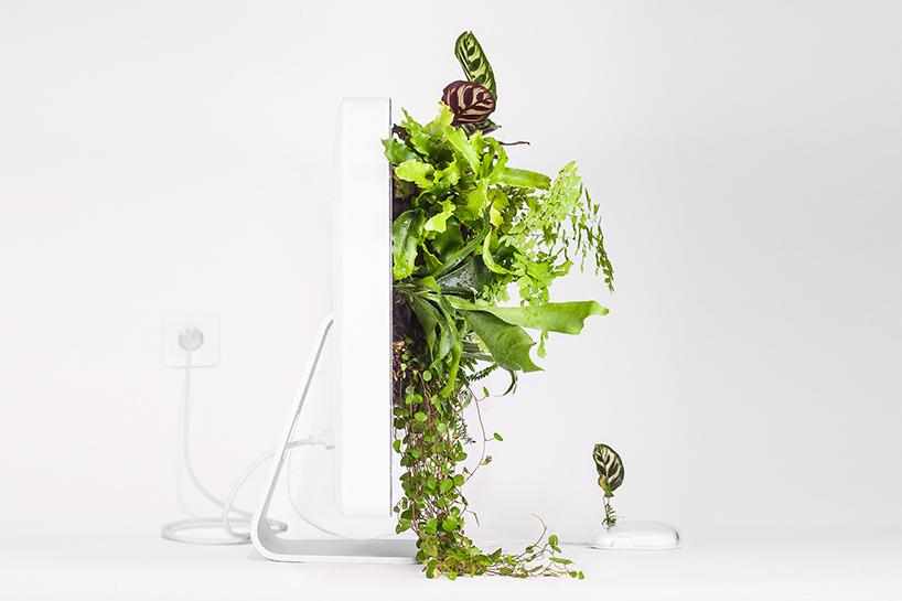 Plant You Mac: een iMac met planten