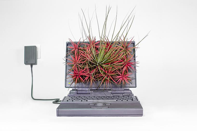 Plant Your Mac in een Powerbook, vooraanzicht