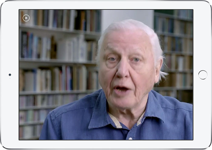 Story of Life-hoofdpersoon David Attenborough