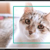 Bixby vs Siri: (te?) veelbelovende nieuwkomer tegenover ervaren assistent