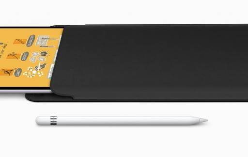 iPad Pro Sleeve.