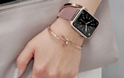 Apple Watch Blush Gold & Grey