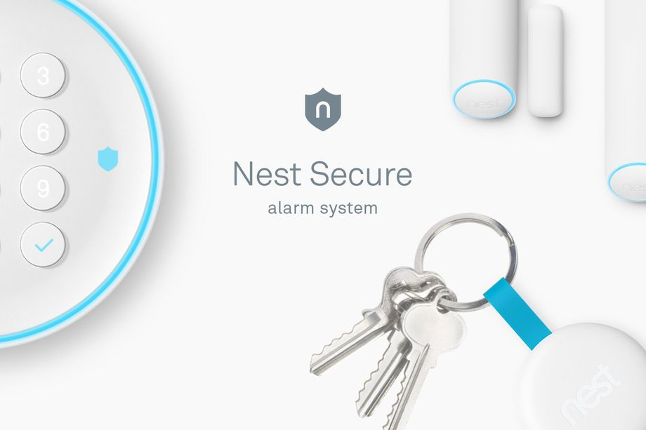 Nest Detect onderdelen
