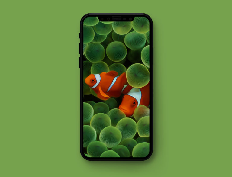 Klassieke wallpapers iPhone X