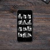 Google experimenteert met twee nieuwe foto-apps voor iOS