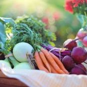 Apps met vegetarische recepten