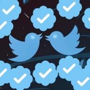 Zo gebruik je Twitter zo veilig mogelijk