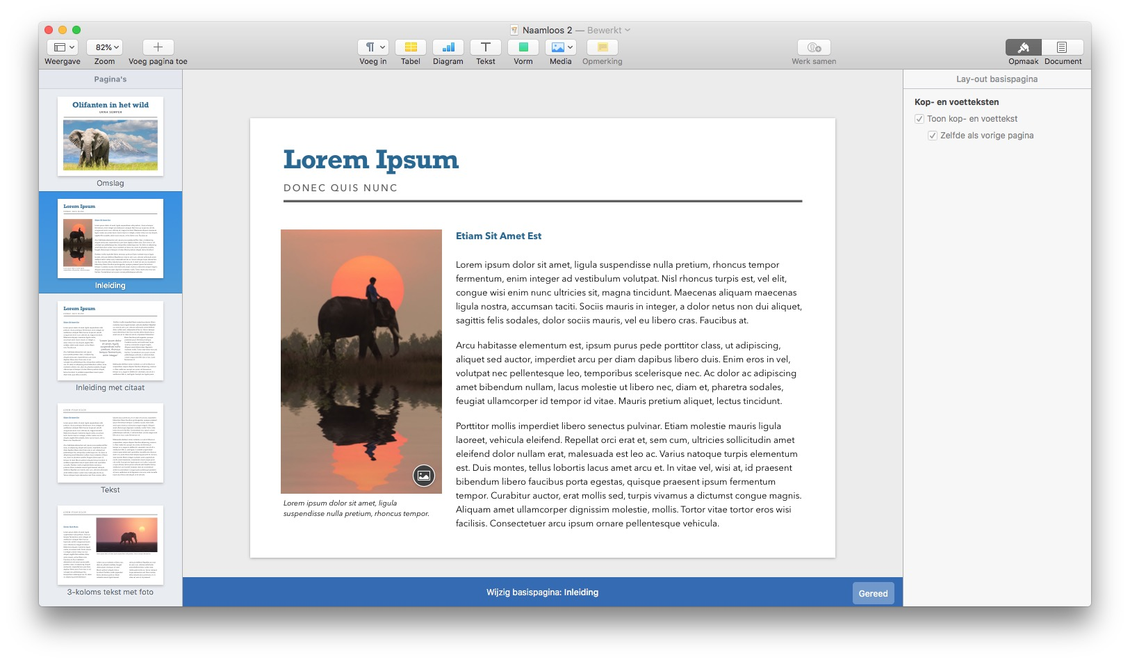 Basispagina's aanpassen boek maken in Pages