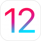 iOS 12 icoon