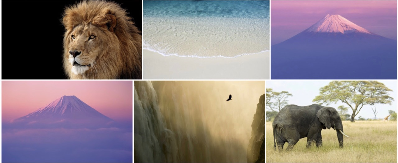 Mac OS X Lion wallpapers.