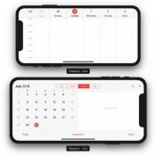 iPhone X Plus landscape agenda