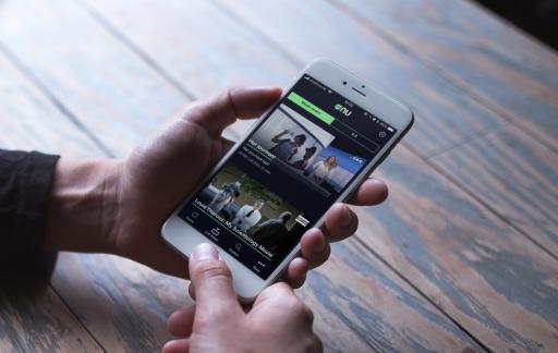 VRT-app op de iPhone.