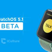 watchOS 5.1 beta