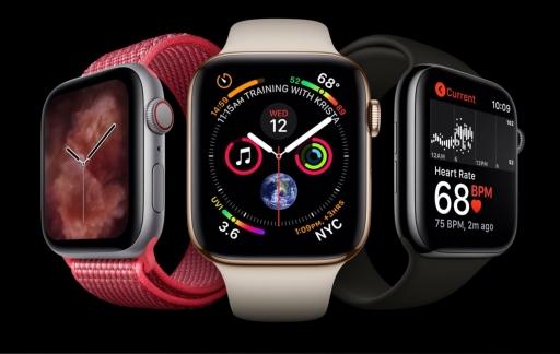 Passen de Apple Watch bandjes