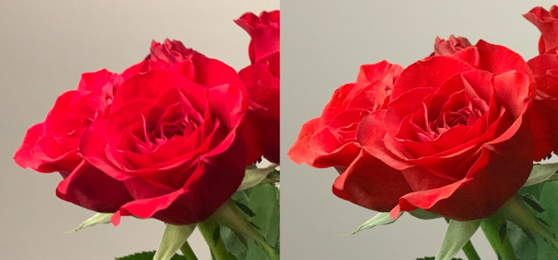 Halide RGB histogram met rozen