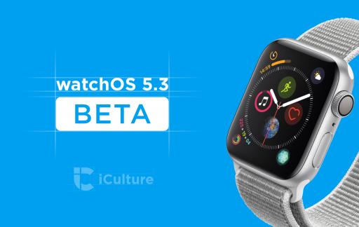 watchOS 5.3 beta.