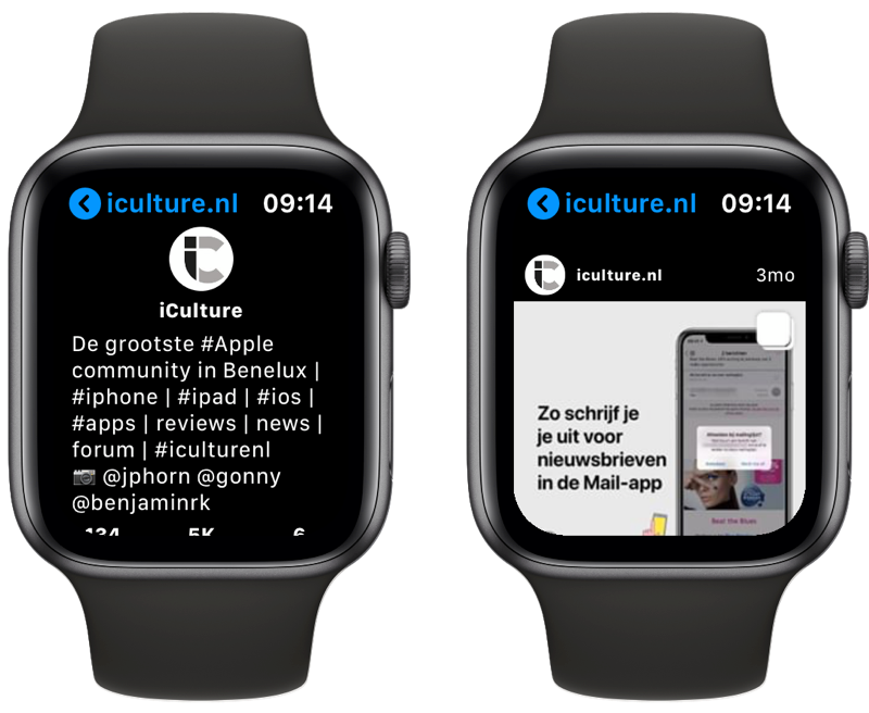 Lens Instagram-app op Apple Watch met profiel en post.