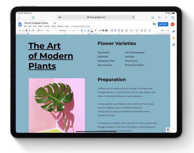 iPadOS Safari op het web