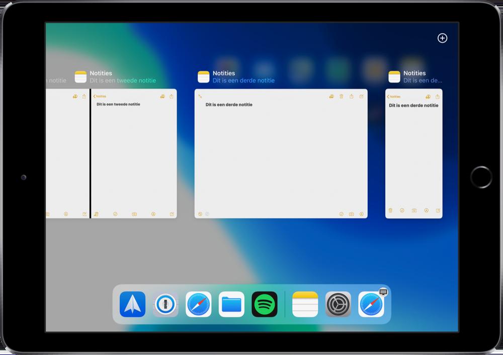 Op de iPad meerdere vensters bekijken.