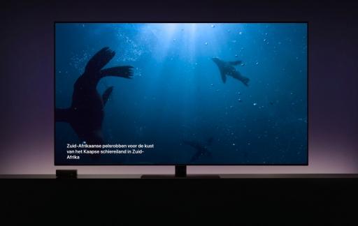 Apple TV screensaver met zeeberen.