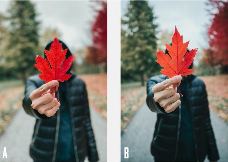 iPhone 11 Pro Camera vergelijking