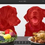 Selecteer hond in Photoshop