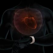 Apple Watch hartslag controleren