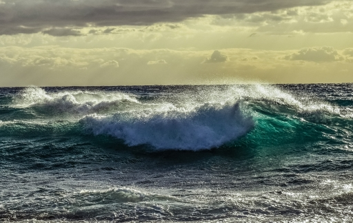 Golven door wind op zee.