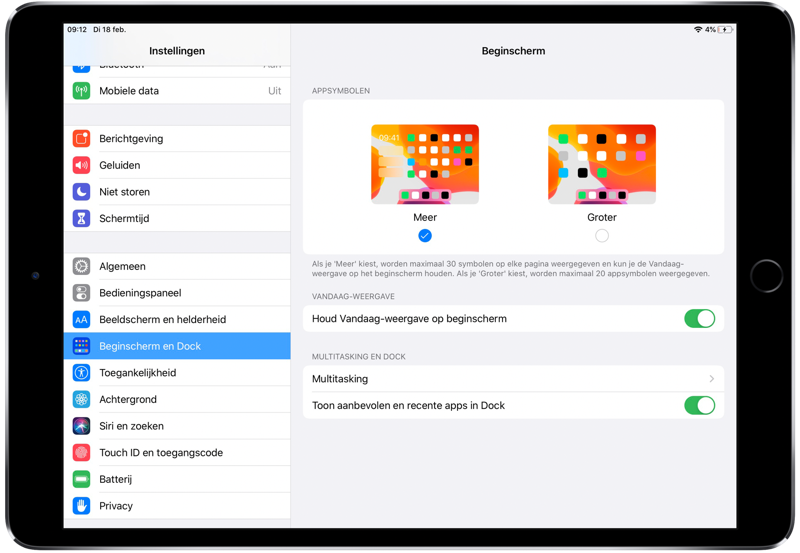 iPadOS beginscherm grootte van icoontjes.
