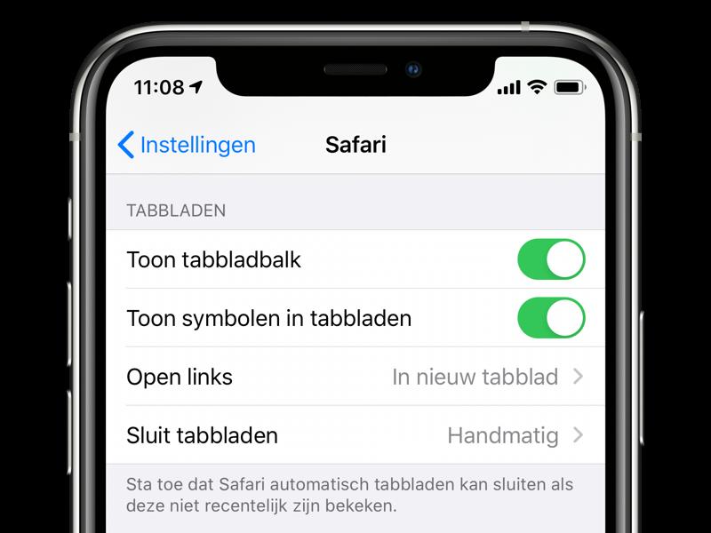 Safari favicons op iPhone inschakelen.