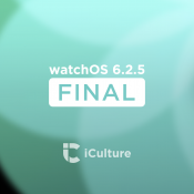 watchOS 6.2.5 final.