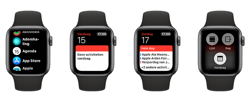 Apple Watch agenda