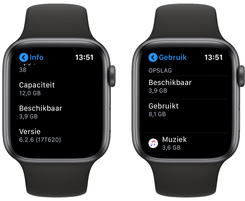 Apple Watch opslag controleren.