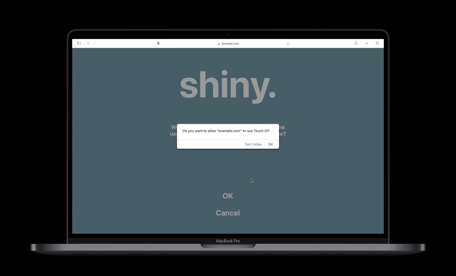 Safari: inloggen op websites met Touch ID