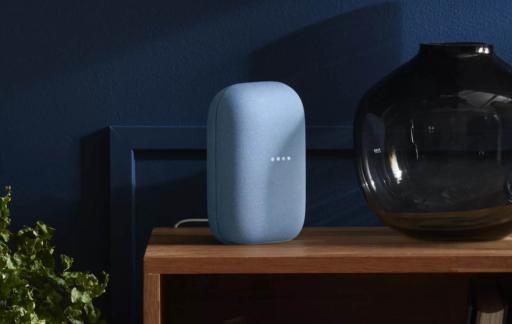 Google Nest speaker 2020