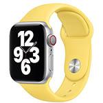 Apple Sportband