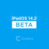 iPadOS 14.2 beta.